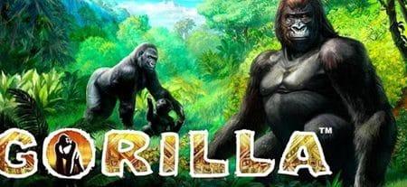 VLT Gorilla